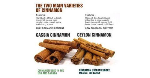 The Benefits of Saigon Cinnamon